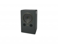 Tannoy Sys 12 DMT