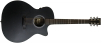 Martin Guitars GPCPA5 Black