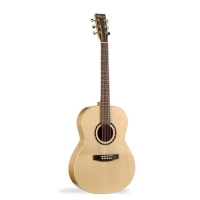 Norman Encore B20 Folk Presys 33140