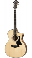 Taylor 114ce 100 Series